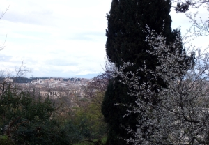 Roma 2014 dag 1 (15) - kopie.JPG