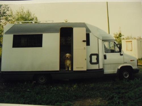 voyage,roumanie,souvenirs,chien