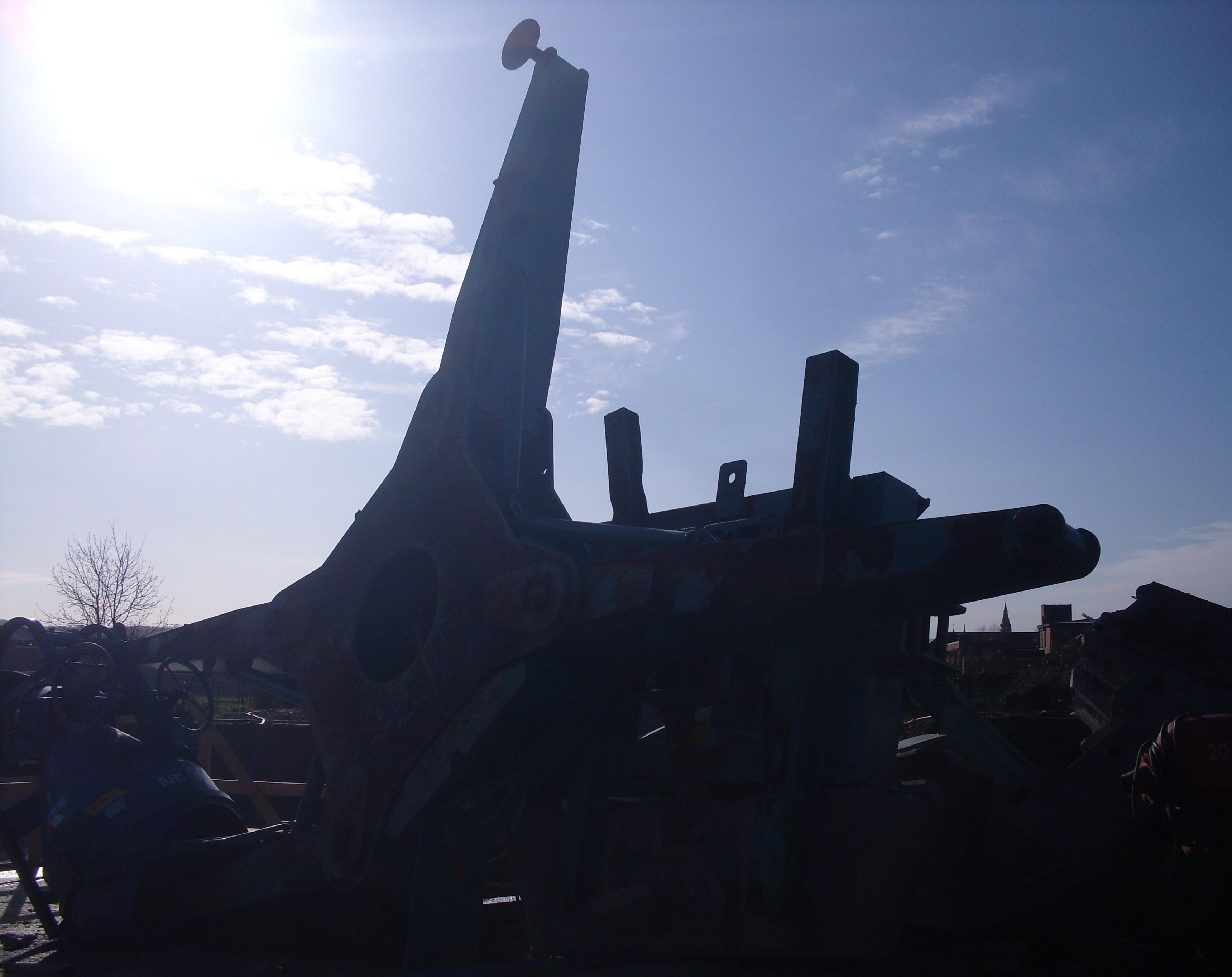 DSCI8295